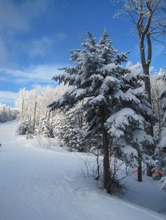 Okemo, VT - Can't wait to try skiing again.