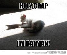 Kitty's sudden realization…
