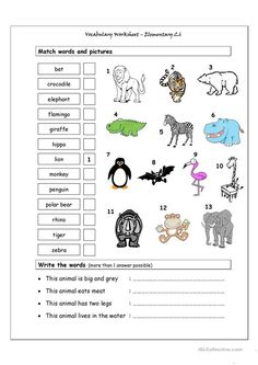 Worksheet : Vocabulary Matching Elementary Wild Animals Generator Esl Printable Worksheets Template Pdf Nocturnal For Kids Large Size Powerpoint Preschool By Topic About Lesson Plans Text Animal Crafts ~ Dondejugaran Matching Worksheets, Animal Worksheets, Vocabulary Worksheets, Animal Activities, Kindergarten Worksheets, Printable Worksheets, English Vocabulary, Letter Worksheets, Animal Riddles
