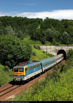 Net Photo: 3216 Hungarian State Railways (MÁV) at Abaliget, Hungary by Tamás Rizsavi Trains, Life, Europe, Hungary, Zug, Train