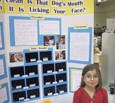 science fair projects with dogs Ideas for science fair projects with dogs thumbnail find this pin and more on science fair by debcorbettwilli whether you complete research beforehand and display the results or conduct a live science fair project with your pet, dogs make an interesting fair project.