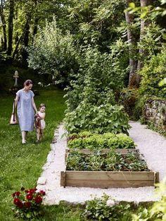 Camille's Backyard Kitchen Garden - Part 1 - Camille Styles
