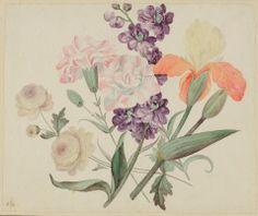 Untitled (Iris, Harequin Tulips and Roses, JH 113) JOHN HANCOCK (ENGLISH, b. 1757–UNKNOWN) C. 1825