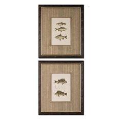 Fish Study I II: 19.125 x 22.625 Print Reproduction