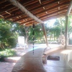 bar e piscina em meio a área verde