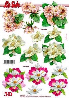 Nieuw bij Knutselparade: 4235 Le Suh knipvel bloemen 777 251 https://knutselparade.nl/nl/bloemen/452-4235-le-suh-knipvel-bloemen-777-251.html   Knipvellen, Bloemen  -  Le Suh