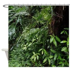 Tropical Forest 07 Shower Curtain