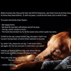 Dogs Will ... Brought to you in part by StoneArtUSA.com ~ pet memorials since 2001