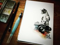 Fiverr freelancer will provide Portraits & Caricatures services and do traditional watercolor animal drawing including Figures within 4 days Little Kittens, Kittens Cutest, Watercolor Animals, Watercolor Paintings, Animal Drawings, Caricature, Art Gallery, My Arts, Iphone Cases