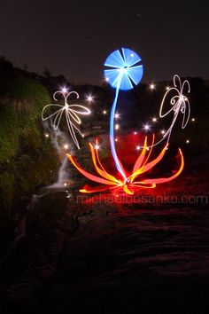 flower light painting