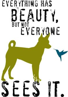 Everything has beauty, but not everyone sees it. (rat terrier)