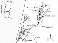Linha de costa laguna de aveiro - Pesquisa do Google