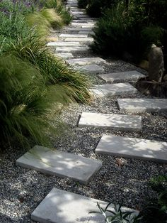 Water-Wise Planting: Xeriscape Garden Inspiration love the gravel and concrete pavers beside the gra Drought Resistant Landscaping, Drought Tolerant Landscape, Outdoor Landscaping, Outdoor Gardens, Modern Gardens, Modern Landscaping, Small Gardens, Landscaping Ideas, Landscape Design