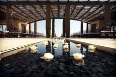 Cabo San Lucas Weddings | Honeymoon Resort | Capella Pedregal