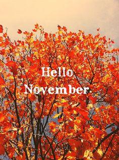 november | Tumblr