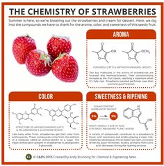 The Chemistry of Strawberries | Compound Chemistry and C&EN magazine