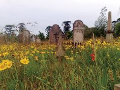 Love looking at old gravestones Cemetery Headstones, Old Cemeteries, Graveyards, Grave Markers, Old Stone, Beautiful Landscapes, Beautiful Flowers, Drinking, Old Things