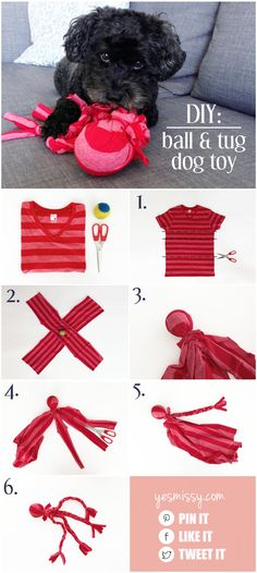 DIY tug toy -no sew ball and tug toy, from an old t-shirt and ball. Could be filled with catnip to turn into cat toy?