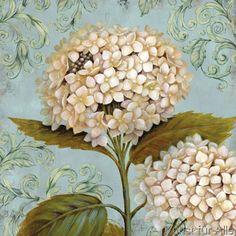 Daphne B. - Ornament IV
