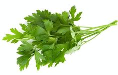 Parsley is an herb which had originated in the Mediterranean region of south Italy, Algeria and Tunisia. Health benefits of parsley include control over cancer, diabetes, effective on rheumatoid arthritis, and help against osteoporosis. It acts as a pain reliever with anti-inflammatory properties.