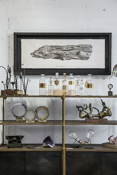 Eclectic Decor   inspiration for your antique collections