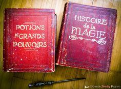 Potter Frenchy Party - Une fête chez Harry Potter: Travaux pratiques : vieux grimoires magiques