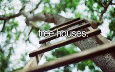 Tree houses - little reason to smile