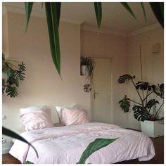 """772 Gostos, 12 Comentários - CELINE SATHAL (@celine.sathal) no Instagram: """"jungle bed"""""""