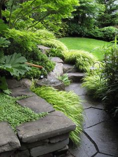 Backyard Landscaping Ideas - The perfect southerly garden starts with a feeling. Obtain influenced by our preferred landscape design concepts, from hills of hollyhocks to straightforward turf actions. Back Gardens, Small Gardens, Outdoor Gardens, Home Garden Design, Woodland Garden, Forest Garden, Garden Cottage, Garden Living, Shade Plants