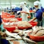 Vietnam's seafood is facing non- tariff barriers in 49 countries and regions, said Vietnam Industry and Trade Information Center (VITIC) under the Ministry of Industry and Trade on Monday.