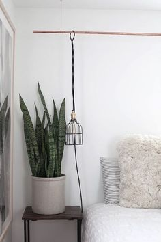 Hanging by a thread 9 inventive ways to hang pendant lights top 5 indoor plants of 2016 aloadofball Images