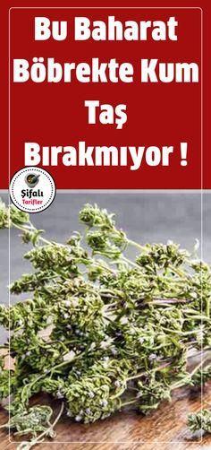 Natural Medicine, How To Dry Basil, Herbs, Health, Nature, Plants, Food, Naturaleza, Health Care
