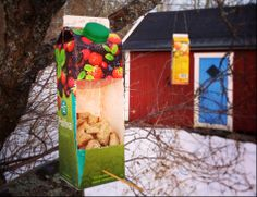 Bord feeder from recycled milk carton. Recycling. Kid crafts. DIY. Instructions in Swedish. Google Translate is your friend!