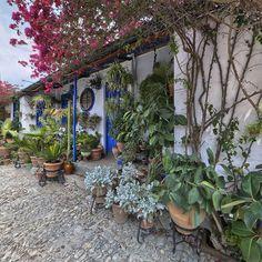 Patio de la calle Marroquies, 6.- Situado en el Barria de Santa Marina a escasos metros de los Jardines de Colón este peculiar patio cordobés esta dividido en varios patios.