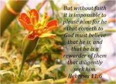 Seek the Lord Deligently