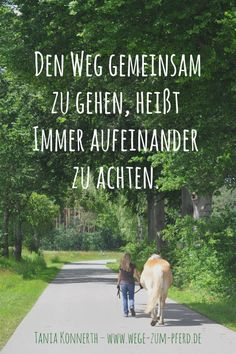 Road to the horse - it works differently! Road to the horse - it works differently! Road to the hors Horse Quotes, Animal Quotes, Inspirational Wallpapers, Animal Wallpaper, Beauty Quotes, Wedding Beauty, Beautiful Horses, Farm Animals, It Works