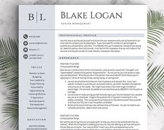 Professional Resume Template For Word U0026 Pages (1, 2 And 3 Page Resumes  Included