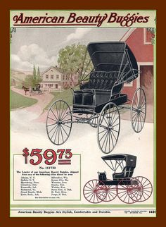 Vintage advertisement for American Beauty Buggies. Just for $59.75 ~ sold in Sears Catalog, 1916.