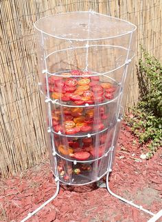 Best 11 Need a quick tomato drying rack? I grow tomatoes and found myself with a lot of tomatoes, so many that I wasn't using them fast enough. I happen to love sun dried tomatoes and chili's and decided I would throw together a quick drying rack. Herb Drying Racks, Drying Herbs, Backyard Vegetable Gardens, Vegetable Garden Design, Outdoor Gardens, Garden Projects, Garden Tools, Herbs Garden, Growing Tomatoes