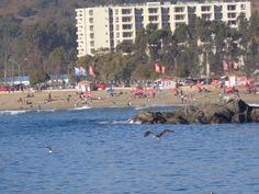 playa grande de Papudo