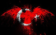 Desktop Pictures, Wallpaper Pictures, Cover Photos, My Photos, Turkey Flag, Turkish People, Timeline Covers, Cs Go, Photo Archive