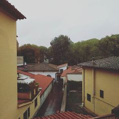 We have arrived and checked in to a lovely hotel on the Arno River. Our view is the other way.
