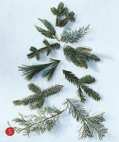 #Christmas #tree #type