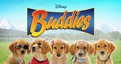 Buddies Home Hero