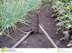 Free Garden Tools -- Check out the image by visiting the link.