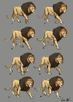Walk Cycle (Cecil the Lion) From Aaron Blaise