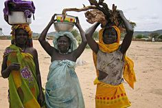 Darfuri women carrying sticks and water in Chad. (Kirsten Johnson, MD)    Detail from a photo in Nowhere to Turn: Failure to Protect, Support and Assure Justice for Darfuri Women, the new Physicians for Human Rights report on Darfuri refugee women in Chad. The report will be published on May 31, 2009.