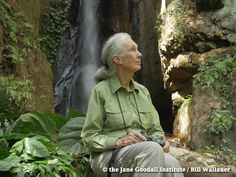Jane Discusses the Horrors of Trophy Hunting | the Jane Goodall Institute