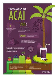 Spain - Synergy WorldWide Blog: Una introducción a la Baya de Acai
