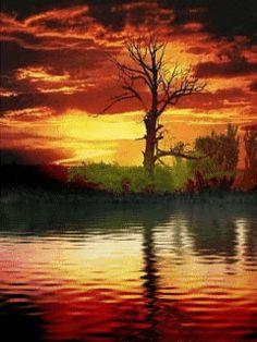 Анимация: Восход отражение на воде из категории Природа в анимации